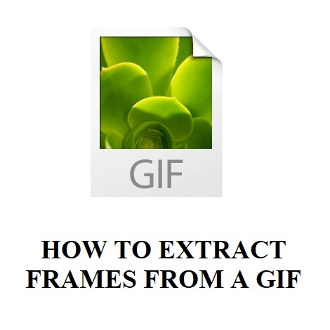 HOW TO EXTRACT FRAMES FROM A GIF