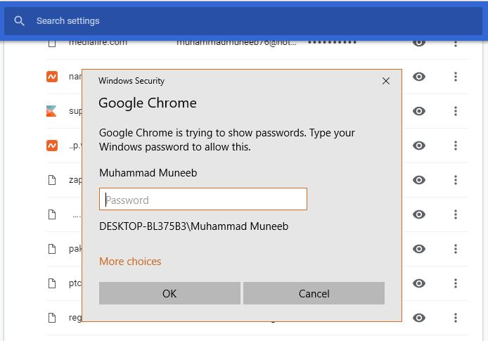 View Passwords in Google Chrome