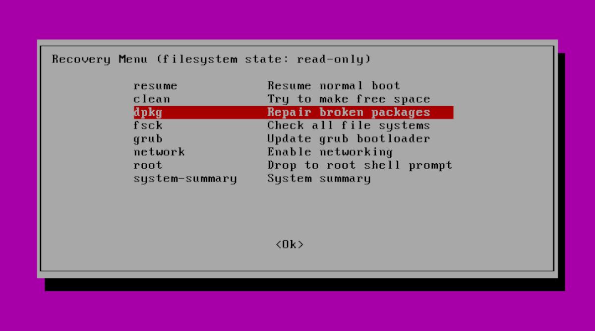 dpkg Ubuntu Recovery Mode
