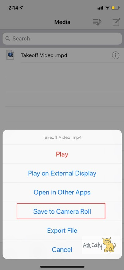 How to Download Facebook Videos on iPhone 6