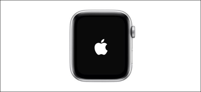 Apple logo appear on screen