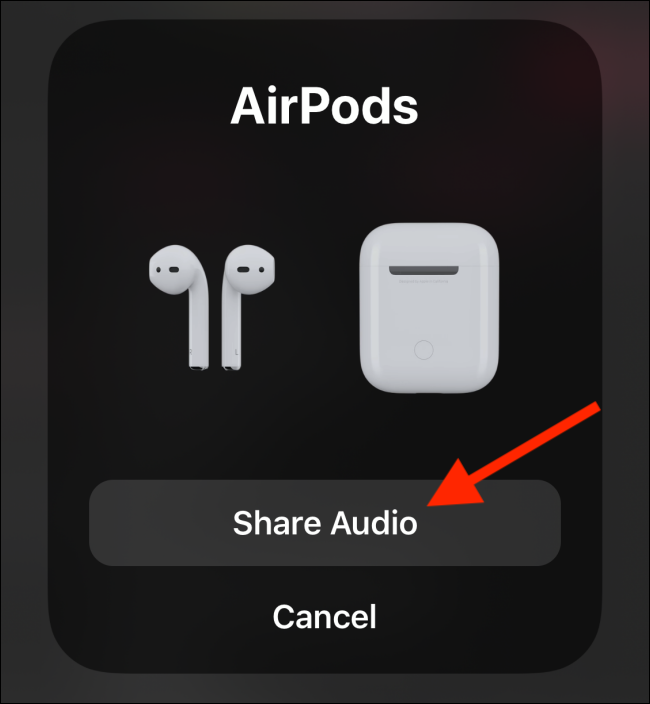 Share audio with paired device