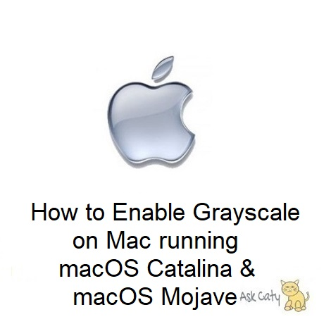 How to Enable Grayscale on Mac running macOS Catalina & macOS Mojave