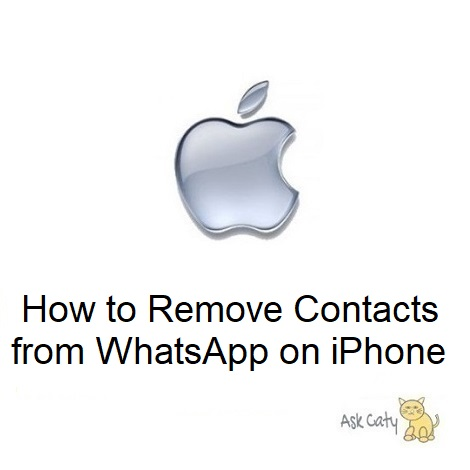 How to Remove Contacts from WhatsApp on iPhone