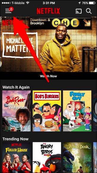 go to the netflix account setting in iphone