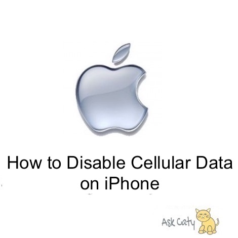 How to Disable Cellular Data on iPhone
