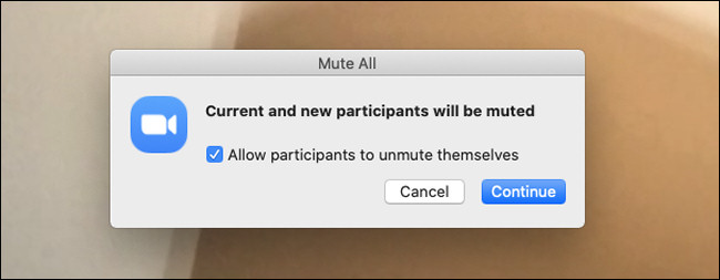 mute all in zoom and click on continue