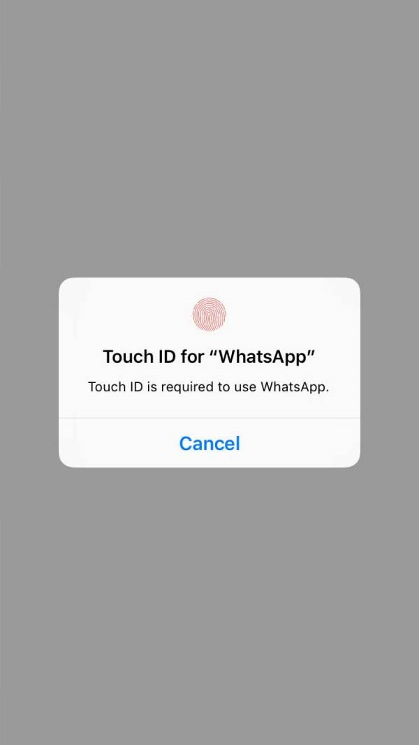 Touch ID for WhatApp to Access Messages on iPhone