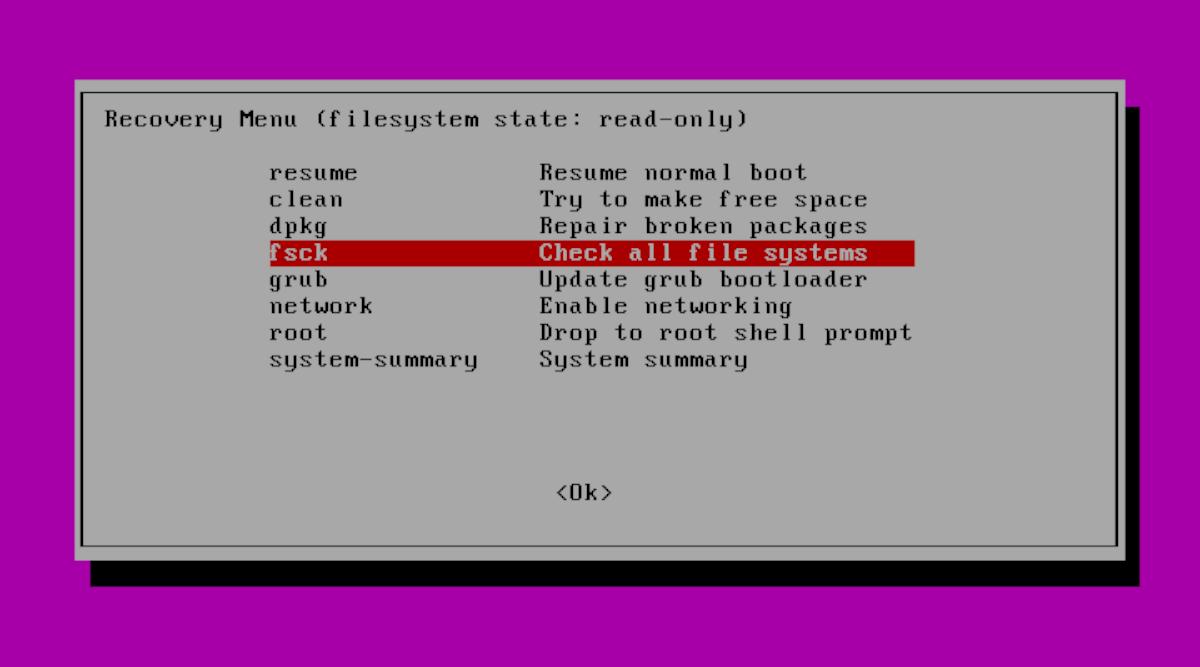 Fsck Ubuntu Recovery Mode