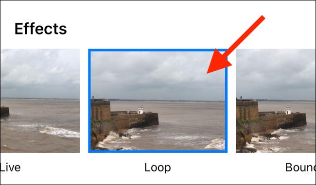 select the Loop effect