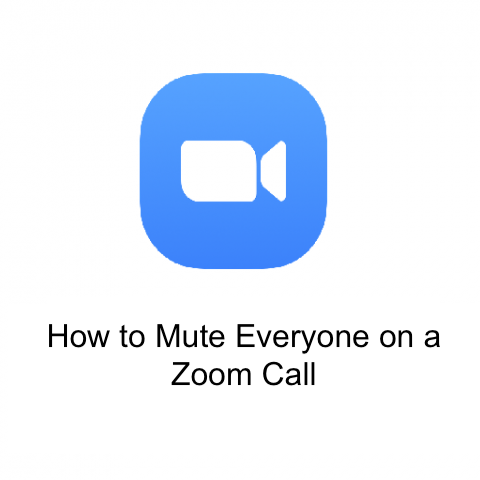 How to Mute Everyone on a Zoom Call