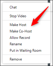 make co-host in a zoom meeting