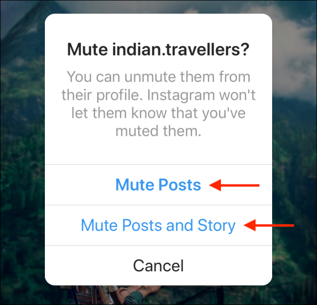 mute posts and story on instagram