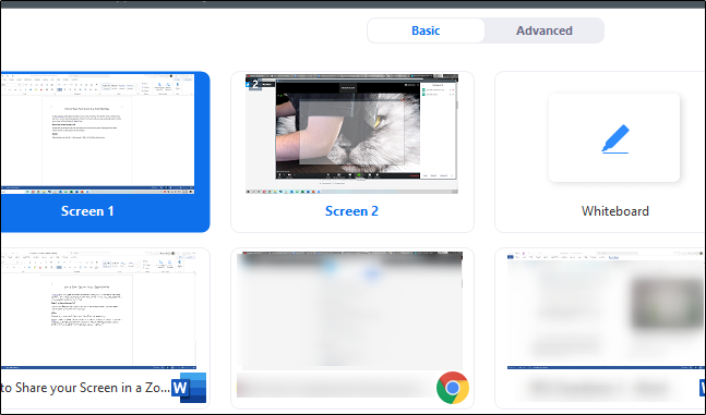select the screen to share with the zoom participants