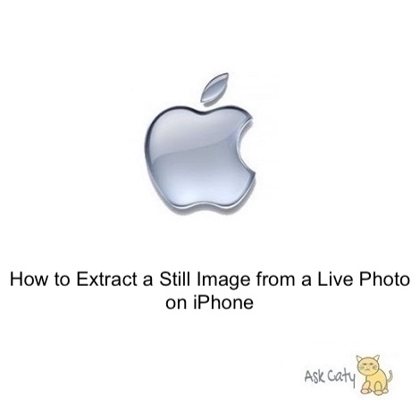 How to Extract a Still Image from a Live Photo on iPhone