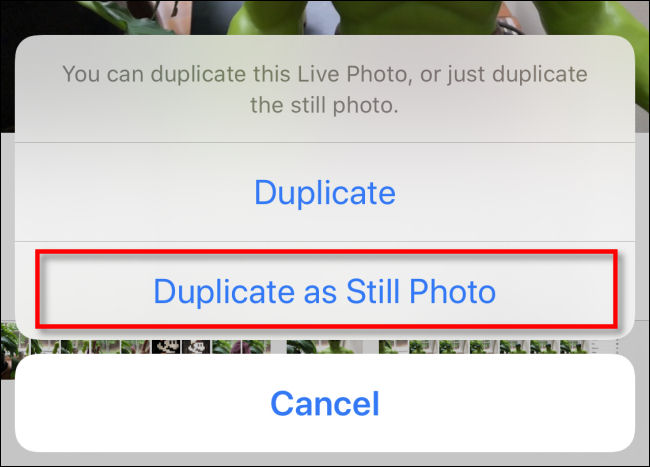 duplicate as still photo