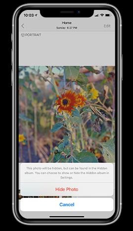 hide photo in iOS 14