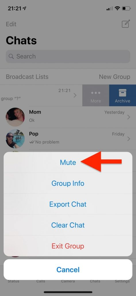 swipe right on whatsapp group chat to reveal more options